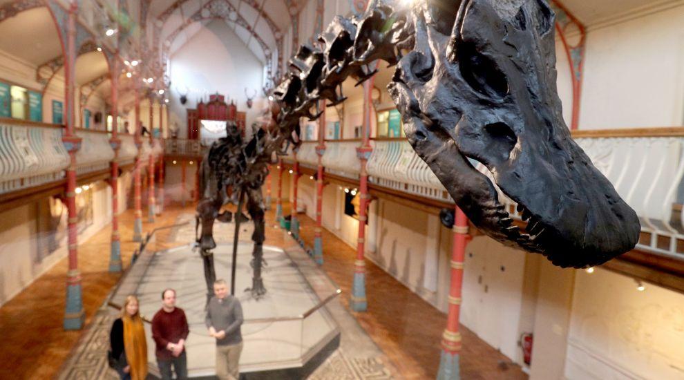 In Pictures: Skeleton crew taking Dippy the Diplodocus on UK tour