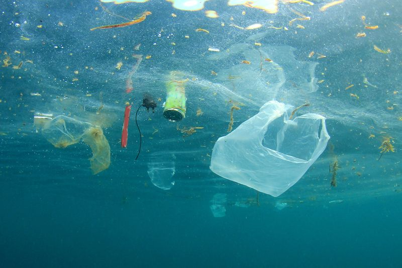 Environment: Plastic Bag ban to be proposed