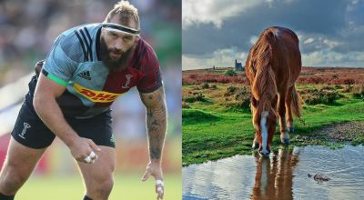 Joe Marler's horse impression in interview proves a hit online