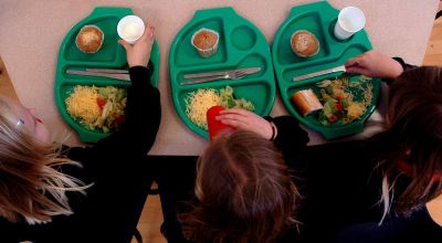 Children open to seeing insect-based meals on school dinner menu, study suggests